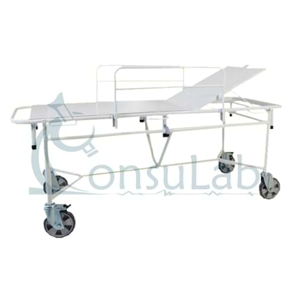Carro Padiola para Obeso com Leito Removível e Grades (Suporta até 200 kg) Pintura Epóxi
