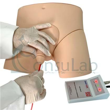 Simulador de Cateterismo Vesical, Bissexual com Dispositivo de Controle.
