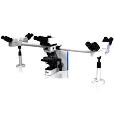 Microscópio Biológico Multi Viewing O600R Multi Head